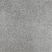 Линолеум SPRINT PRO - Arizona 1